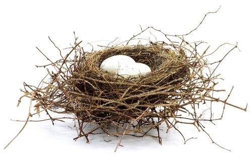 Alcune uova bianche in un nido di rami