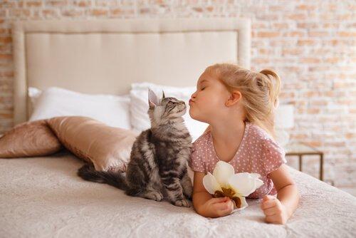 Bimba bacia gatto sul letto