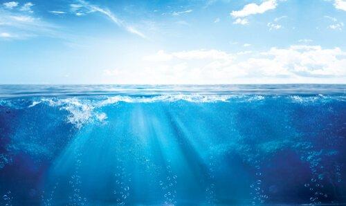 La luce si riflette sulla cresta del mare