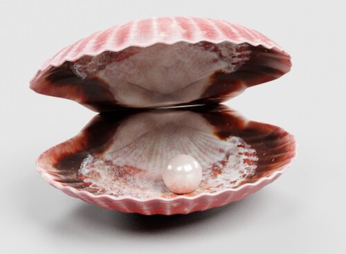 ostrica aperta con perla