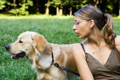 Consigli pratici per attirare l'attenzione del cane