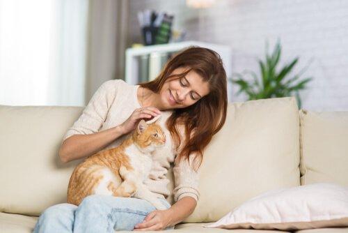 Ragazza gioca col gatto sul divano