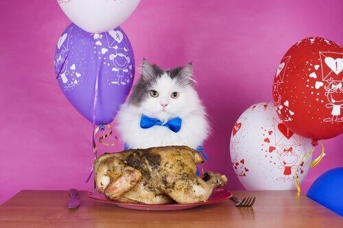 un gatto con davanti un pollo al forno