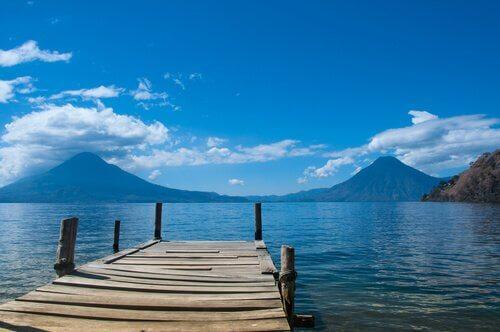 Cos'hanno in comune laghi e paludi per gli esseri viventi?