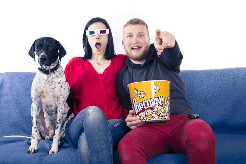 una coppia guarda un film con il cane sul divano