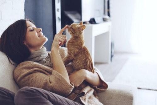 Donna gioca con gatto arancione