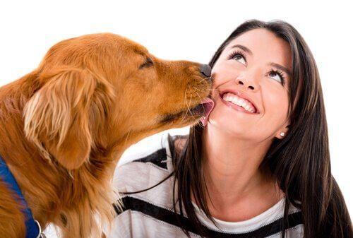 8 segnali che indicano che il vostro cane vi ama