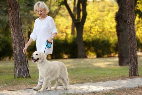 Anziana al parco con cane