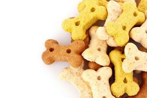 Snack che non dovete dare al vostro cane