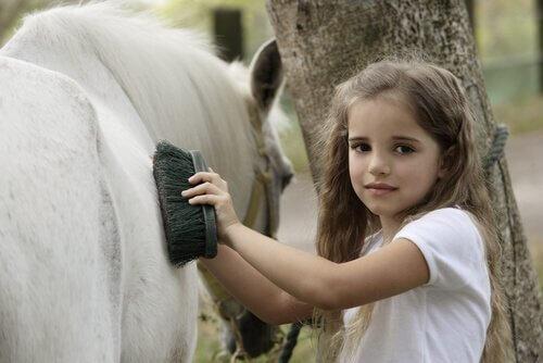L'igiene quotidiana del cavallo: elementi fondamentali