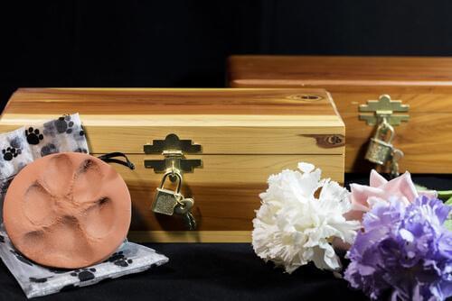 Quali opzioni ci sono per gli animali domestici quando muoiono?