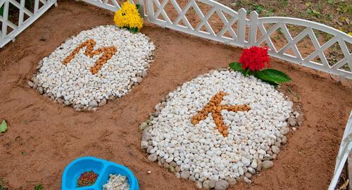 Cimiteri per animali domestici tombe