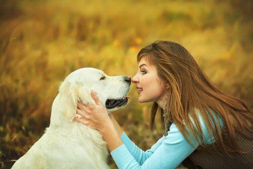 In che modo i cani elaborano il linguaggio umano?