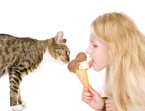 Bambina e gatto mangiano gelato