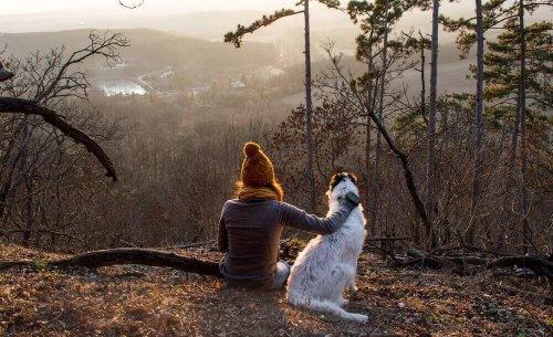 Donna con cane nel bosco