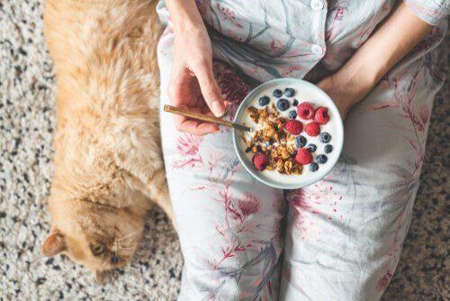 I gatti e la frutta