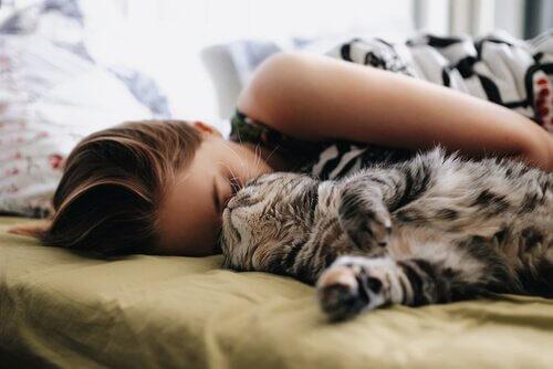 5 aspetti da considerare prima di dormire con il vostro gatto