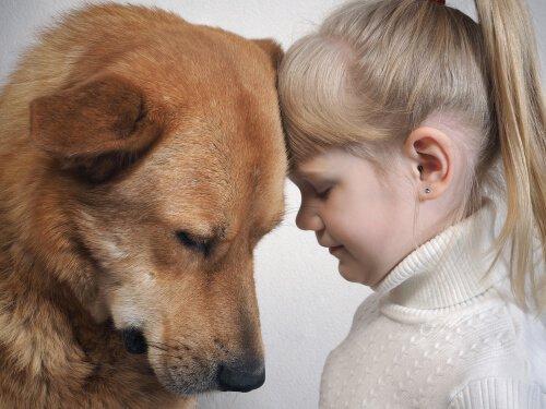 I cani capiscono le espressioni facciali delle persone?