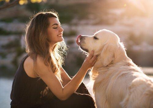 quale linguaggio usare con i cani