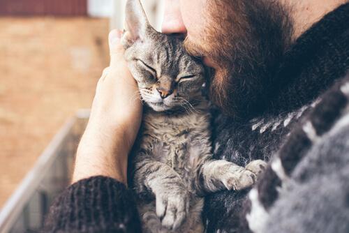 Padrone che bacia gatto in braccio