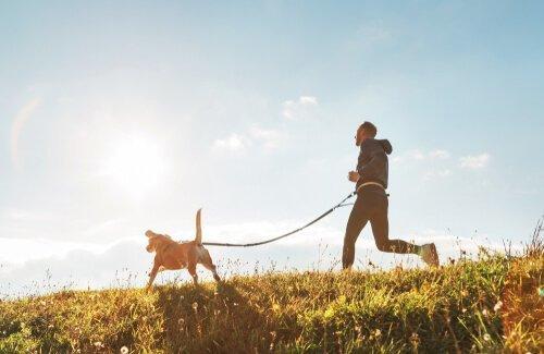 Padrone e cane corrono