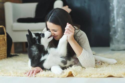 Ragazza e cane sul tappeto