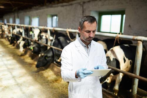 La resistenza agli antibiotici e l'allevamento