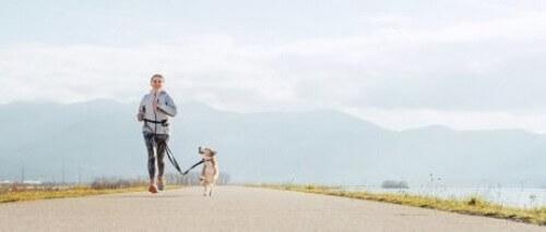 Correre con il vostro cane: benefici