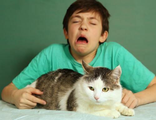 I segnali che indicano che si è allergici ai gatti