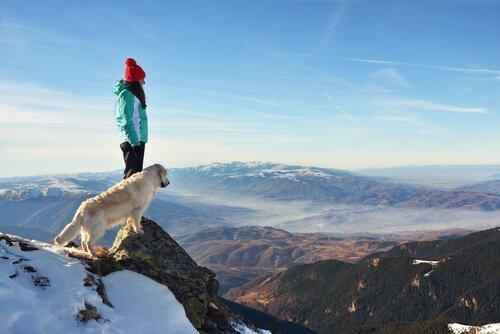 Arrampicata con il cane tra sport pericolosi