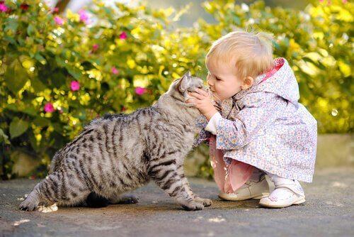 Bambina piccola con gatto