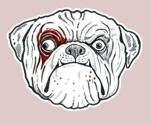 Caricatura del cane di fronte