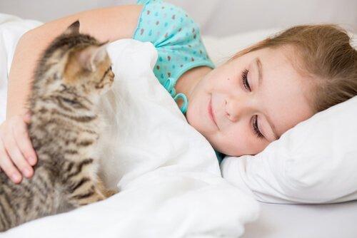 I gatti sono una buona compagnia per i bambini?