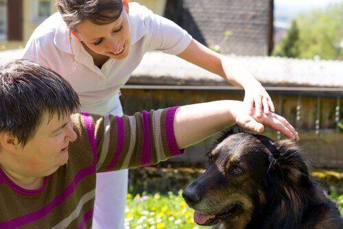 Terapia cane