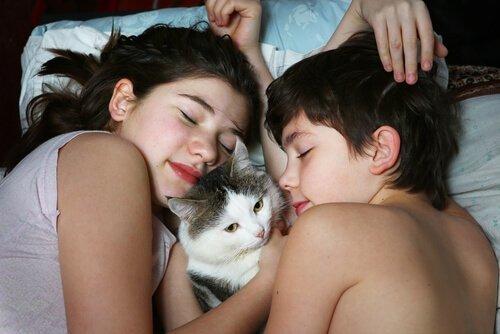Bambini dormono con gatto