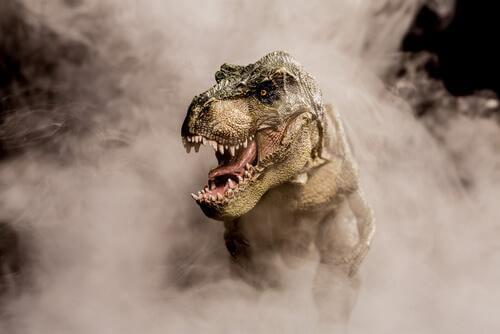 Ecco 6 curiosità sul Tirannosauro rex