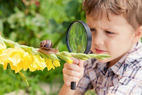 Bambino osserva lumaca