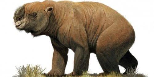 La megafauna estinta dell'Australia