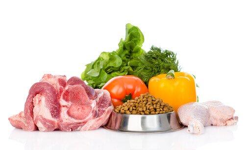 Alimenti biologici per animali domestici