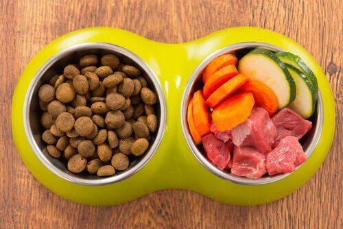 Alimenti biologici per animali