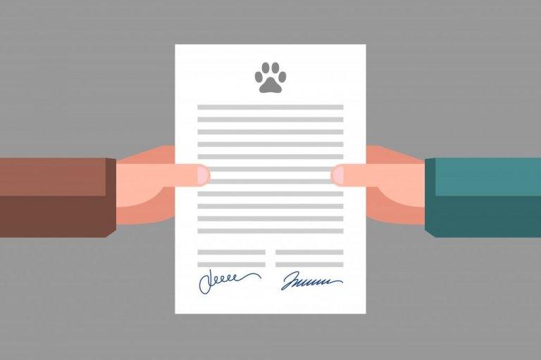 Tutto sulla documentazione legale per animali