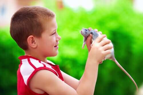 Bambino con ratto