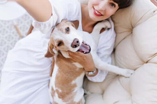 Donna e cani felici