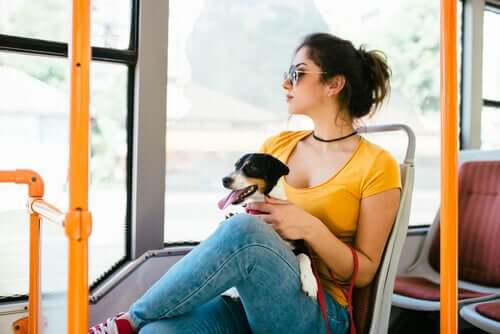 Ragazza con cane su autobus
