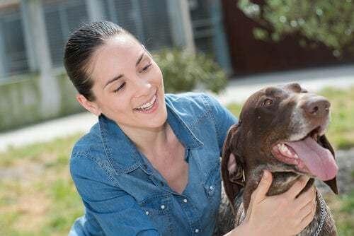 Cane con dog sitter