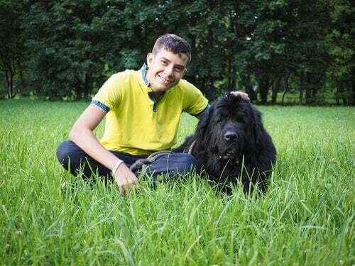 Dog sitter felice che accarezza un terranova