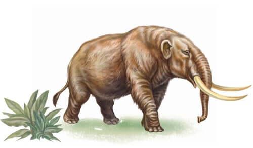 Conoscete la storia del mastodonte estinto?