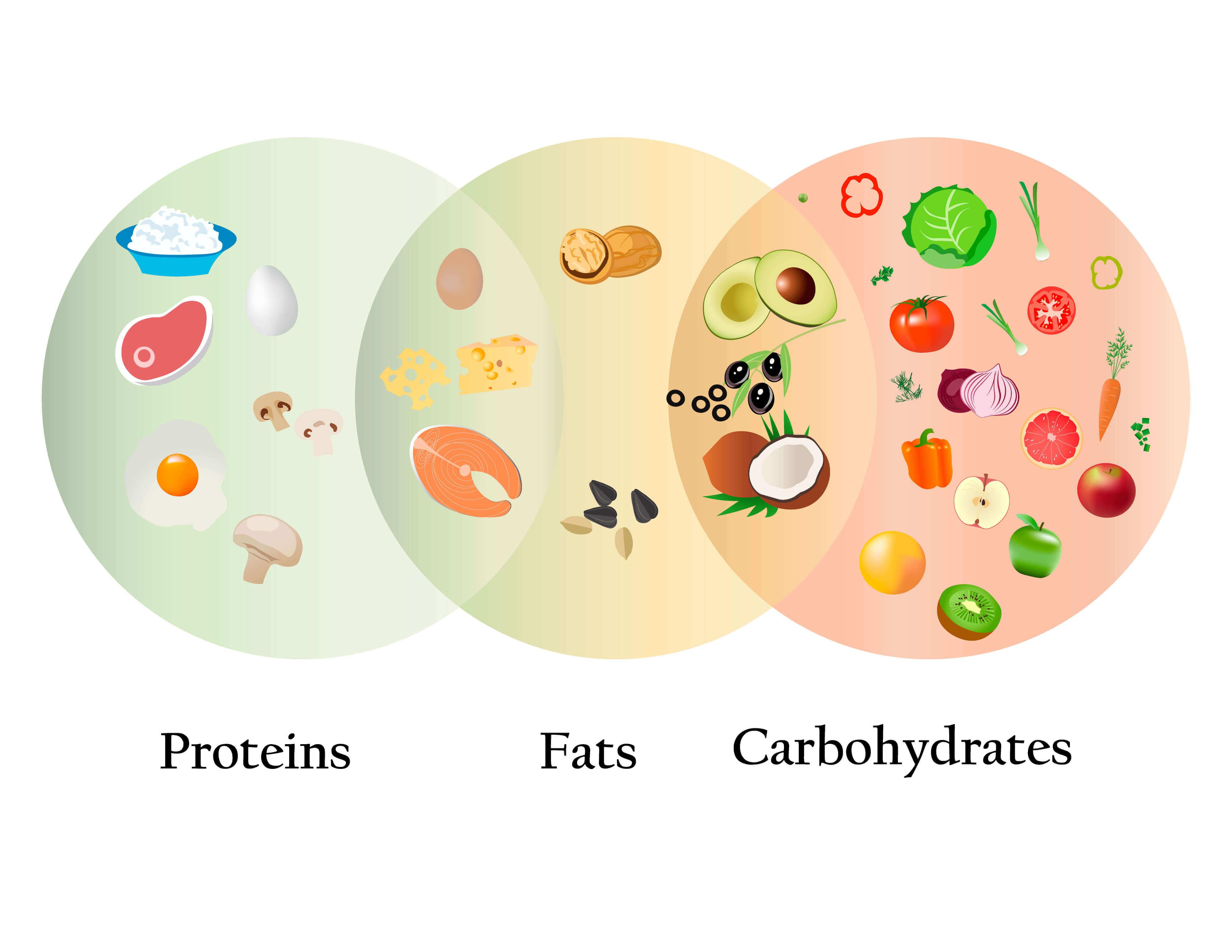 quali nutrienti essenziali sono contenuti negli alimenti