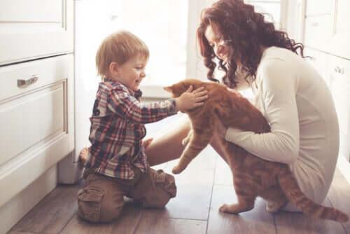 L'influenza degli animali domestici sulla vita umana