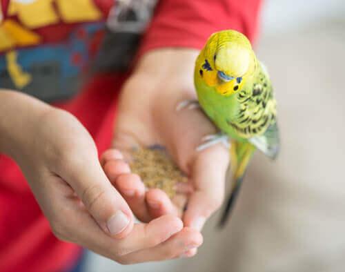 animali domestici ideali per i bambini